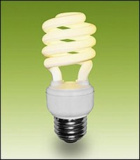 COMPACT FLUORESCENT LIGHT BULBS. CFL.JPG Amazing Pictures